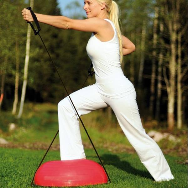 Fit-Dome Pro Fitnessgerät