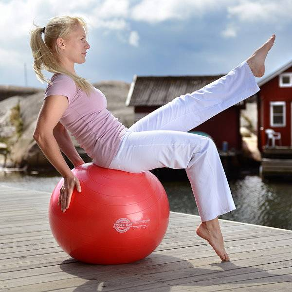 Securemax Gymnastikball